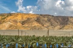 Galilee ©SCP-SA706993A