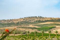 Golan Heights ©SCP-SA707479