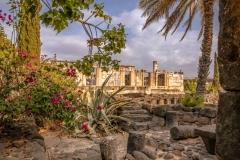 Capernaum (SA706901)