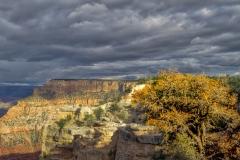 Grand Canyon (2018) SA705130