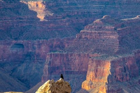 Grand Canyon (2018) SA705148