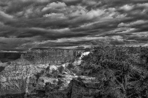 Grand Canyon (2018) SA7